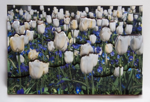 "Spring Tulips Collage ""Spring is in the Air"" Pacific Art League April 2015"
