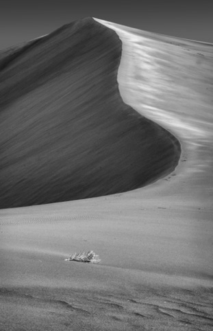 "Big Dunes ""Photography and the Creative Eye"" Pacific Art League June 2018"