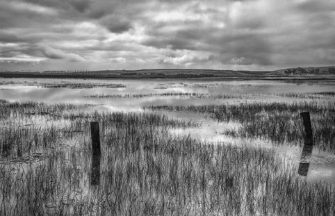 "King Tide at the Palo Alto Baylands ""Images/Place Memory"" Palo Alto Camera Club, Avenue 25 Gallery March-April 2017"